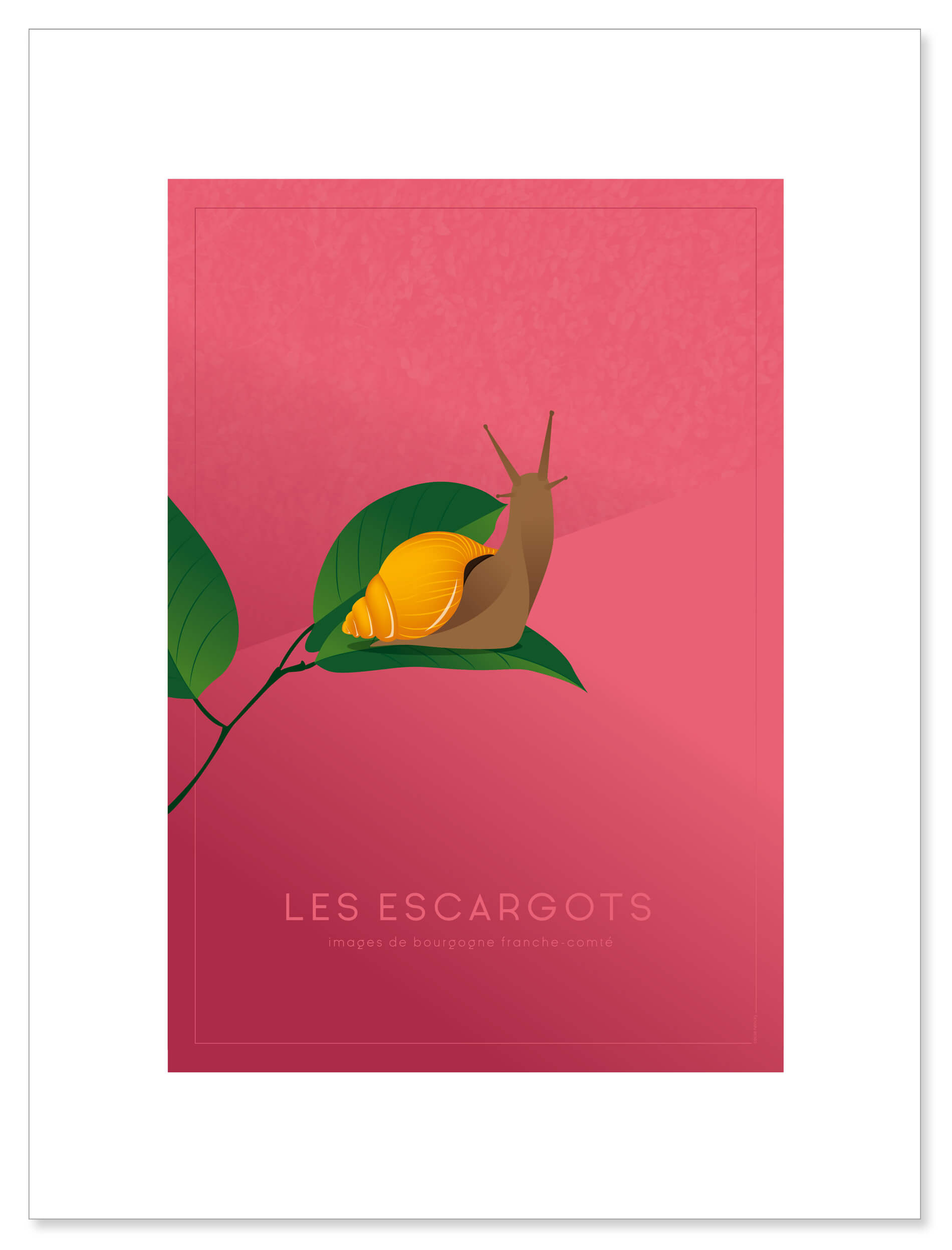 affiche-escargot-visuel